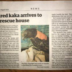 Injured Kaka arrives to a full rescue house